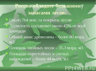 Россия обладает большими запасами лесов: Около 764 млн. га покрыты лесом Лесисто