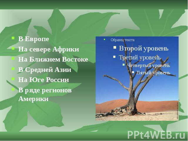 В Европе На севере Африки На Ближнем Востоке В Средней Азии На Юге России В ряде регионов Америки
