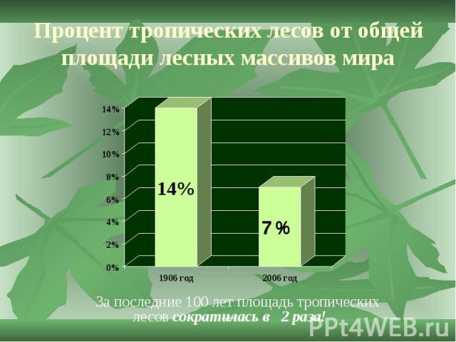 Процент тропических лесов от общей площади лесных массивов мира За последние 100 лет площадь тропических лесов сократилась в 2 раза!