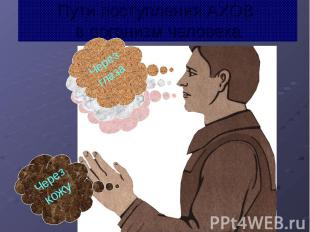 Пути поступления АХОВ в организм человека