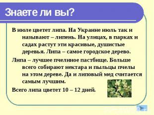 Знаете ли вы? В июле цветет липа. На Украине июль так и называют – липень. На ул