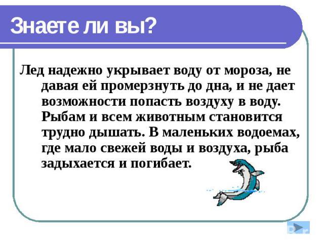 Знаете ли вы? Лед надежно укрывает воду от мороза, не давая ей промерзнуть до дна, и не дает возможности попасть воздуху в воду. Рыбам и всем животным становится трудно дышать. В маленьких водоемах, где мало свежей воды и воздуха, рыба задыхается и …
