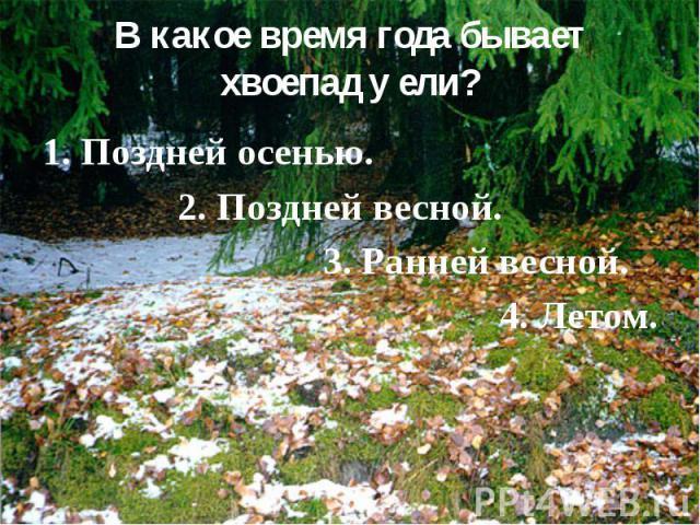 В какое время года бывает хвоепад у ели? 1. Поздней осенью. 2. Поздней весной. 3. Ранней весной. 4. Летом.