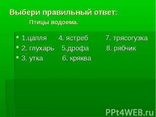 1.цапля 4. ястреб 7. трясогузка 1.цапля 4. ястреб 7. трясогузка 2. глухарь 5.дро