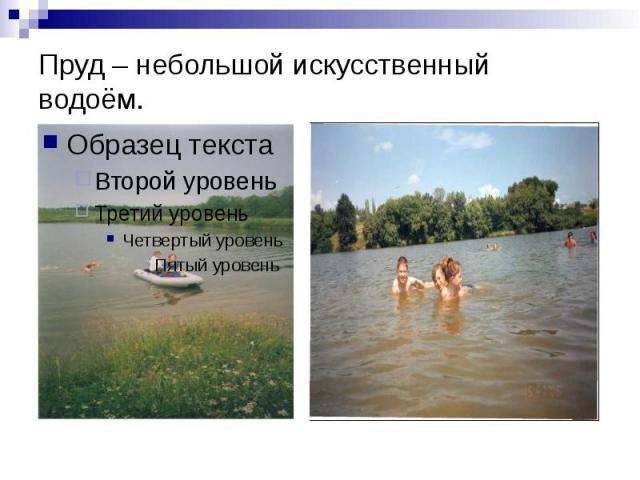 Пруд – небольшой искусственный водоём.