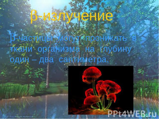 -излучение -частицы могут проникать в ткани организма на глубину один – два сантиметра.