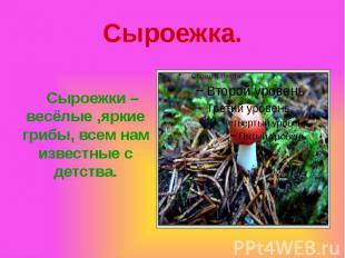 Сыроежка. Сыроежки – весёлые ,яркие грибы, всем нам известные с детства.