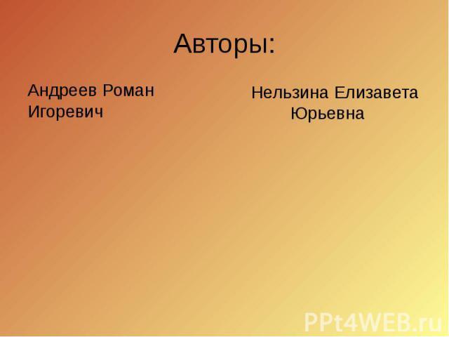 Авторы: Андреев Роман Игоревич