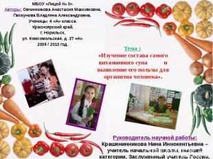 МБОУ «Лицей № 3». Авторы: Овчинникова Анастасия Максимовна, Пискунова Владлена А