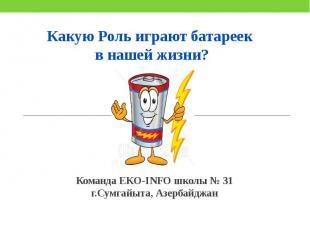 Команда EKO-INFO школы № 31 г.Сумгайыта, Азербайджан