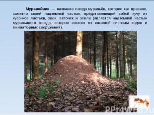 Муравейник— название гнездамуравьёв, которое как правило, заме
