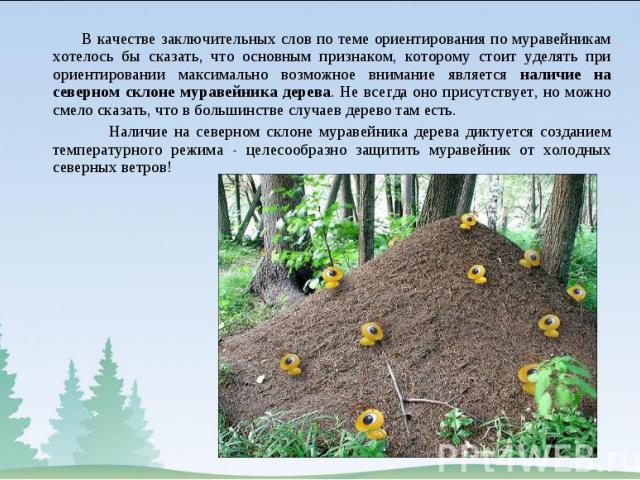 В качестве заключительных слов по теме ориентирования по муравейникам хотелось бы сказать, что основным признаком, которому стоит уделять при ориентировании максимально возможное внимание является наличие на северном склоне муравейника дерева. Не вс…