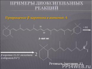 Превращение β-каротина в витамин А Превращение β-каротина в витамин А