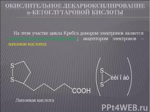 На этом участке цикла Кребса донором электронов является оксиацетилтиаминпирофос