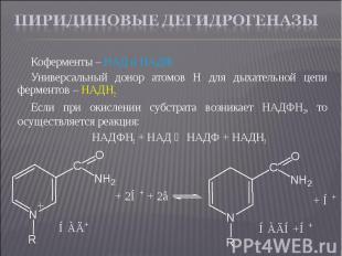 Коферменты – НАД и НАДФ Коферменты – НАД и НАДФ Универсальный донор атомов Н для
