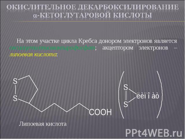 На этом участке цикла Кребса донором электронов является оксиацетилтиаминпирофосфат; акцептором электронов – липоевая кислота: На этом участке цикла Кребса донором электронов является оксиацетилтиаминпирофосфат; акцептором электронов – липоевая кислота: