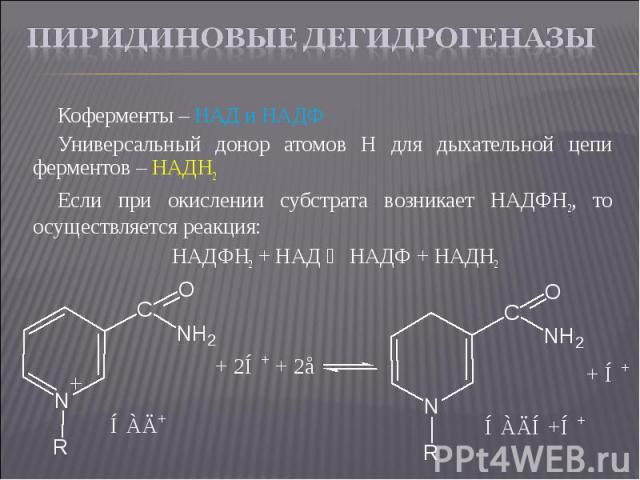 Коферменты – НАД и НАДФ Коферменты – НАД и НАДФ Универсальный донор атомов Н для дыхательной цепи ферментов – НАДН2 Если при окислении субстрата возникает НАДФН2, то осуществляется реакция: НАДФН2 + НАД ⇄ НАДФ + НАДН2