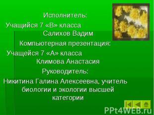Исполнитель: Учащийся 7 «В» класса Салихов Вадим Компьютерная презентация: Учаще
