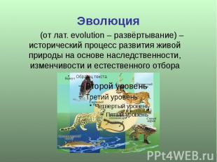 Эволюция (от лат. evolution – развёртывание) – исторический процесс развития жив