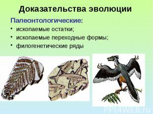 Доказательства эволюции Палеонтологические: ископаемые остатки; ископаемые перех
