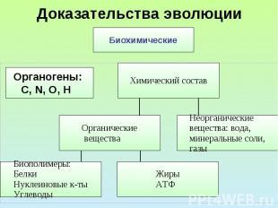 Доказательства эволюции Биохимические