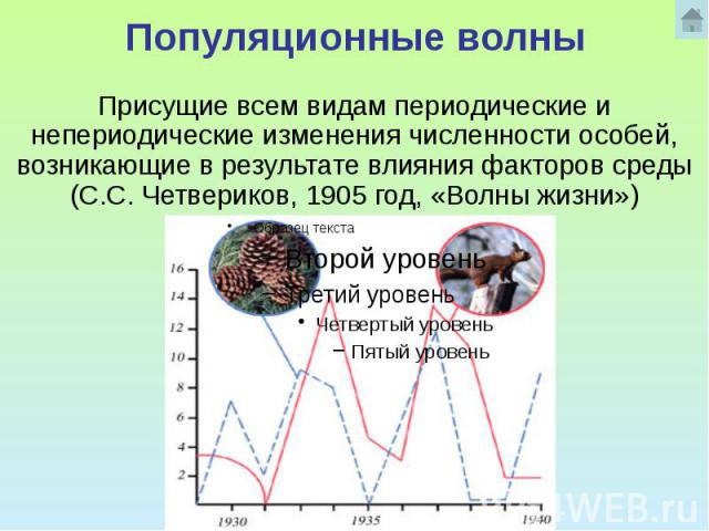 Популяционные волны Присущие всем видам периодические и непериодические изменения численности особей, возникающие в результате влияния факторов среды (С.С. Четвериков, 1905 год, «Волны жизни»)