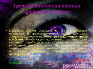 Цветовое зрение основано на 3-х независимых процессах. В трехкомпонентной теории