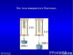 Вес тела измеряется в Ньютонах.