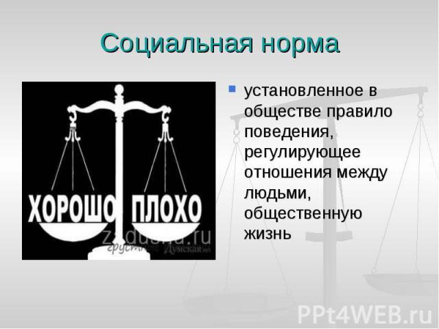 Социальная норма установленное в обществе правило поведения, регулирующее отношения между людьми, общественную жизнь