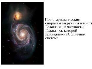 По логарифмическим спиралям закручены и многие Галактики, в частности, Галактика