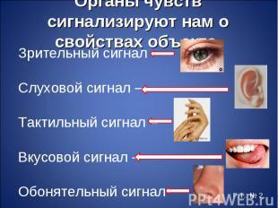 Зрительный сигнал – Зрительный сигнал – Слуховой сигнал – Тактильный сигнал – Вк