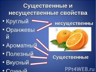 Круглый Круглый Оранжевый Ароматный Полезный Вкусный Сочный
