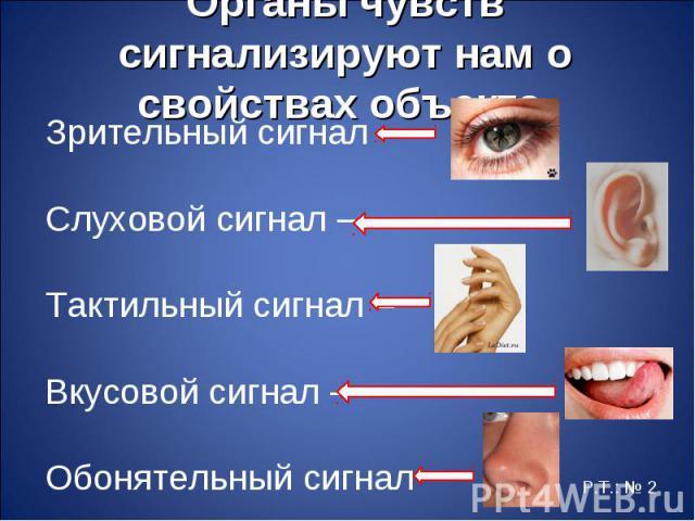 Зрительный сигнал – Зрительный сигнал – Слуховой сигнал – Тактильный сигнал – Вкусовой сигнал – Обонятельный сигнал –