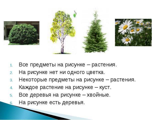Все предметы на рисунке – растения. Все предметы на рисунке – растения. На рисунке нет ни одного цветка. Некоторые предметы на рисунке – растения. Каждое растение на рисунке – куст. Все деревья на рисунке – хвойные. На рисунке есть деревья.