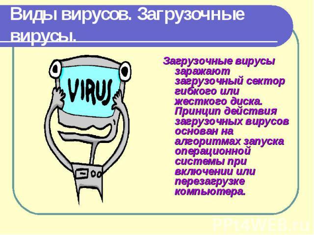 Загрузочные вирусы заражают загрузочный сектор гибкого или жесткого диска. Принцип действия загрузочных вирусов основан на алгоритмах запуска операционной системы при включении или перезагрузке компьютера. Загрузочные вирусы заражают загрузочный сек…