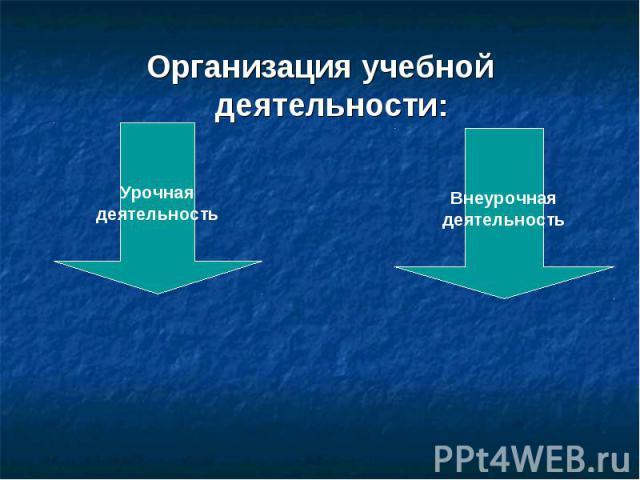 Организация учебной деятельности: