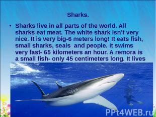 Sharks live in all parts of the world. All sharks eat meat. The white shark isn'