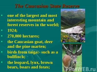 one of the largest and most interesting mountain and forest reserves in the worl