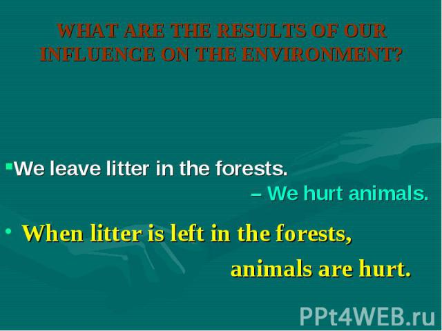 When litter is left in the forests, When litter is left in the forests, animals are hurt.