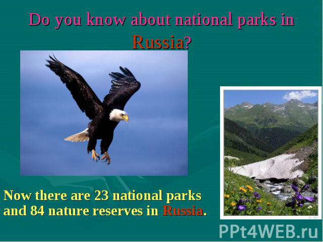 Now there are 23 national parks and 84 nature reserves in Russia.