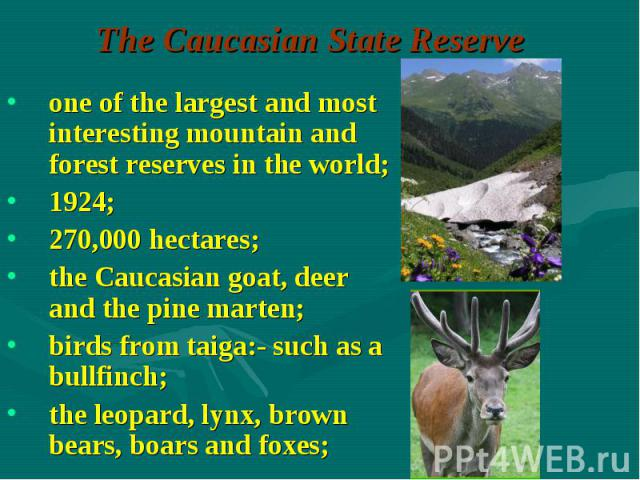 one of the largest and most interesting mountain and forest reserves in the world; one of the largest and most interesting mountain and forest reserves in the world; 1924; 270,000 hectares; the Caucasian goat, deer and the pine marten; birds from ta…