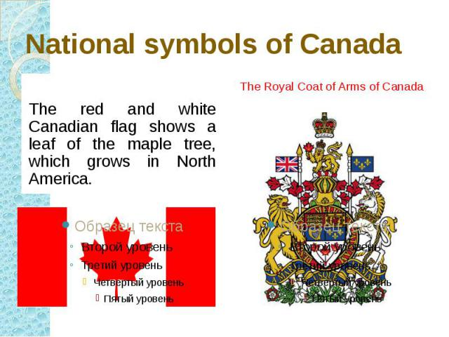 National symbols of Canada The red and white Canadian flag shows a leaf of the maple tree, which grows in North America.