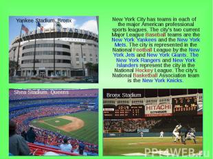 New York City has teams in each of the major American professional sports league