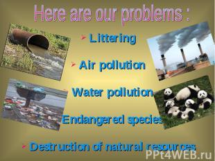 Littering Littering Air pollution Water pollution Endangered species Destruction