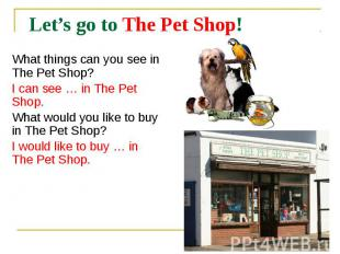 Let's go to The Pet Shop! What things can you see in The Pet Shop? I can see … i