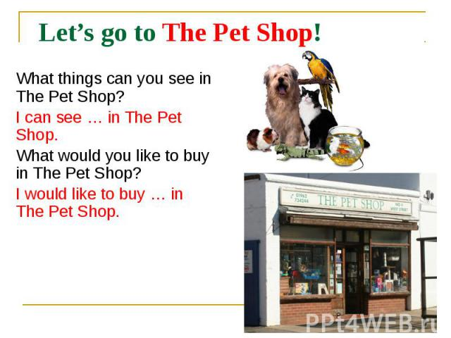 Let's go to The Pet Shop! What things can you see in The Pet Shop? I can see … in The Pet Shop. What would you like to buy in The Pet Shop? I would like to buy … in The Pet Shop.