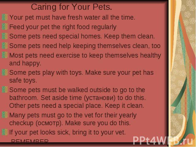 Caring for Your Pets. Your pet must have fresh water all the time. Feed your pet the right food regularly Some pets need special homes. Keep them clean. Some pets need help keeping themselves clean, too Most pets need exercise to keep themselves hea…
