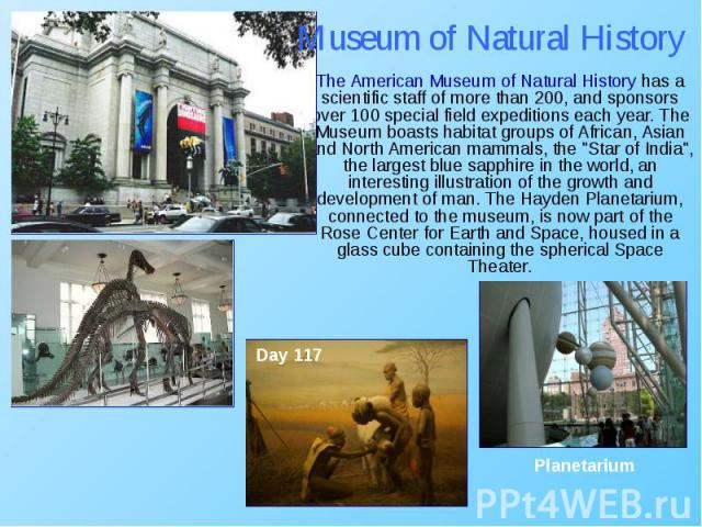"The American Museum of Natural History has a scientific staff of more than 200, and sponsors over 100 special field expeditions each year. The Museum boasts habitat groups of African, Asian and North American mammals, the ""Star of India"", …"