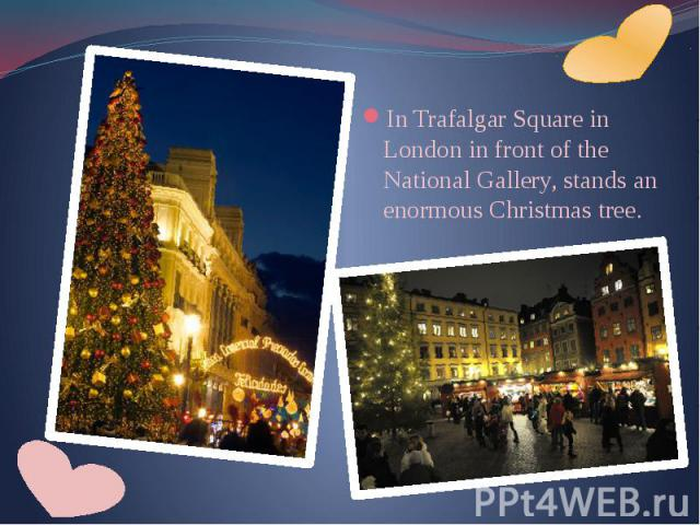 In Trafalgar Square in London in front of the National Gallery, stands an enormous Christmas tree. In Trafalgar Square in London in front of the National Gallery, stands an enormous Christmas tree.
