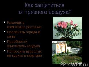 Разводить комнатные растения Разводить комнатные растения Озеленять города и сел